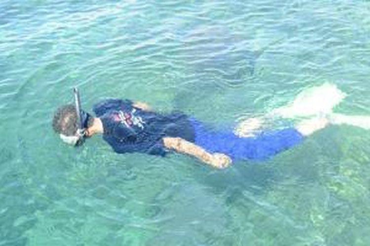 Wisatawan menikmati keindahan alam bawah laut perairan Pulau Bawean, Kabupaten Gresik, Jawa Timur, Selasa (20/5/2014). Hingga kini, potensi keindahan alam bawah laut perairan Pulau Bawean masih belum tergarap maksimal.