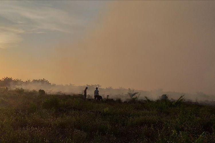 Sejumlah warga memadamkan api karhutla di Desa Teluk Bano II, Kecamatan Pekaitan, Kabupaten Rohil, Riau, Kamis (4/7/2019).