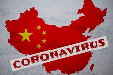 Indonesia Masih Negatif Virus Corona, Benarkah Tak Mampu Deteksi?