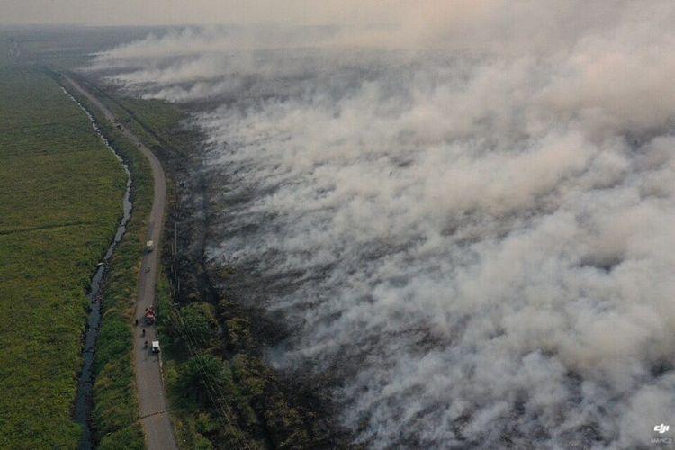 Tangkapan layar video kebakaran hutan dan lahan di Jalan Pelang-Tumbang Titi, Desa Pelang, Kecamatan Matan Hilir Selatan, Kabupaten Ketapang, Kalimantan Barat, hingga Minggu (18/8/2019) malam.