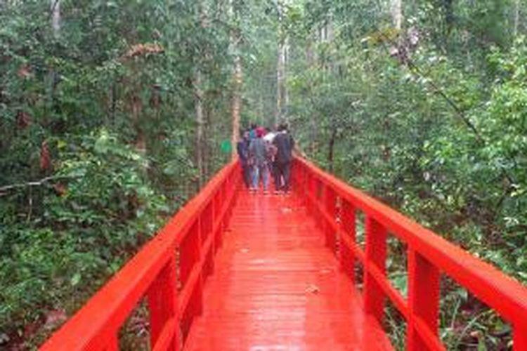 Hutan Pelawan di Kabupaten Bangka Tengah sebagai salah satu obyek wisata di Provinsi Bangka Belitung.