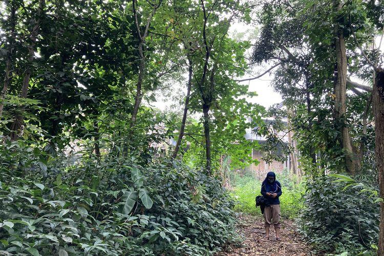 Kawasan hutan yang akan dilalui oleh wisatawan yang hendak menuju ke salah satu titik Sungai Ciliwung yang memiliki pesona indah, lengkap dengan pepohona rindang, serta rerumputan dan semak belukar yang masih hijau dan asri, Kota Bogor, Senin (24/5/2021).
