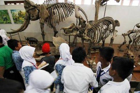 Pengunjung Museum Geologi Bandung Meningkat
