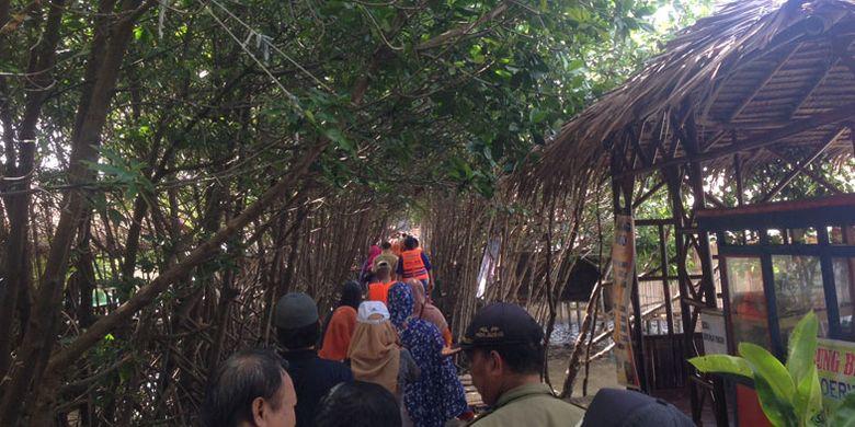 Wisata susur mangrove di Desa Kaliwingi, Kecamatan Brebes, Kabupaten Brebes, Jawa Tengah.