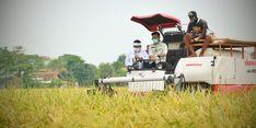 Genjot Produksi Pertanian, Kementan Siapkan Sejumlah Program Ketahanan Pangan