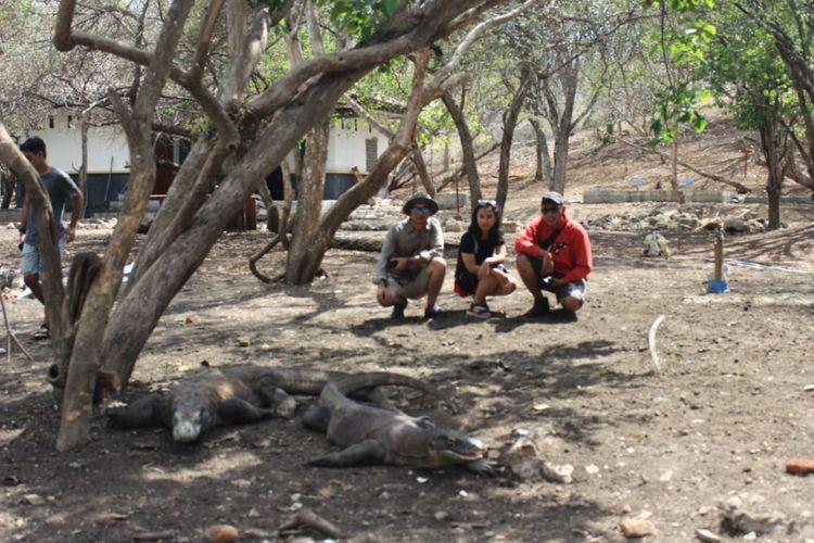 Pemenang Pegipegi Yuk! Jelajah Indonesiamu saat mengunjungi sarang komodo, di Taman Nasional Komodo, Manggarai Barat, Nusa Tenggara Timur, Jumat (30/11/2018).