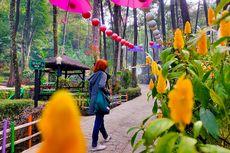 Srambang Park yang Instagramable di Ngawi Sudah Buka Kembali