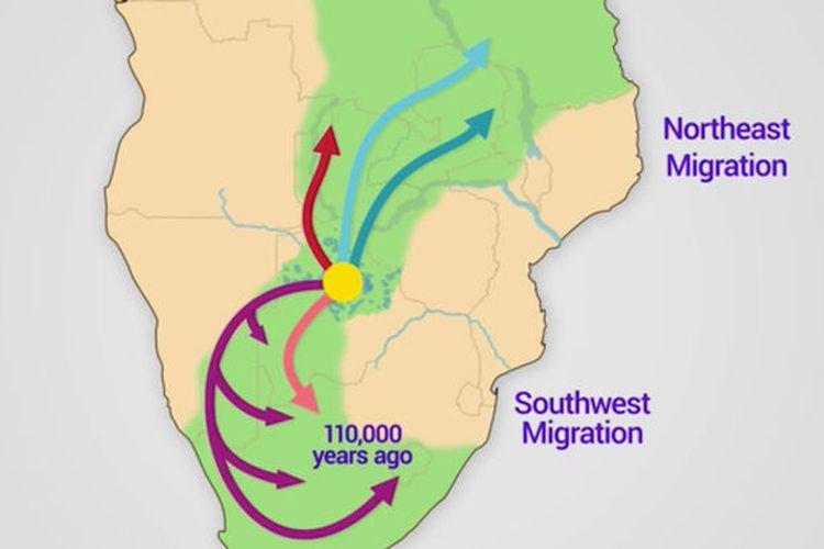 Peta persebaran migrasi manusia modern (Homo sapiens) dari kampung halamannya di Botswana, Afrika Selatan.