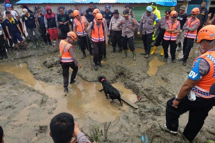 Anjing pelacak polisi saat melakukan pencarian terhadap para korban banjir bandang Jayapura.