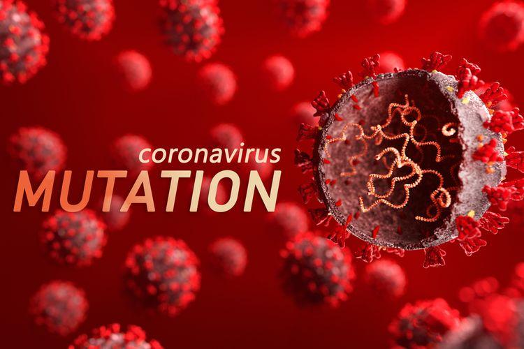 Ilustrasi mutasi virus corona