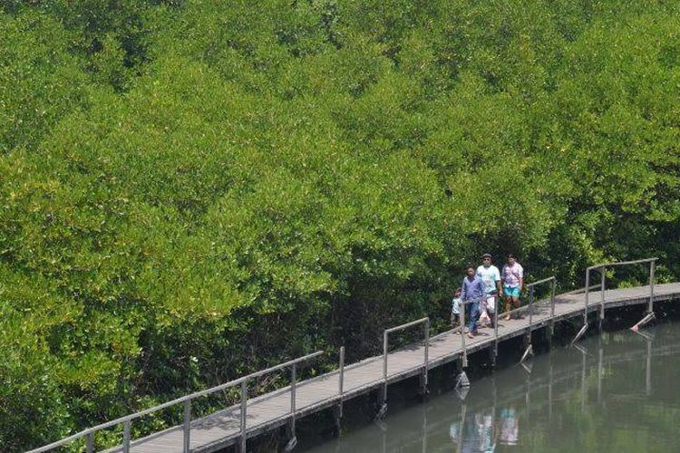 Ekowisata Mangrove Penajam adalah salah satu destinasi yang menarik untuk dikunjungi saat berkunjung ke Kalimantan Timur.