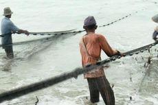 Pukat Harimau Kembali Marak, Nelayan Bengkulu Mengeluh