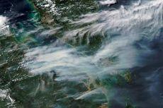 BNPB Kerahkan Helikopter Antisipasi Kebakaran Hutan di Kalbar