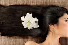 9 Penyubur Rambut dari Bahan Alami yang Patut Dicoba