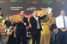 Sekardus Mangga Terjual Rp 300 Juta di Sydney