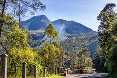 Filosofi Unik Jalur Pendakian Gunung Lawu via Cemara Sewu