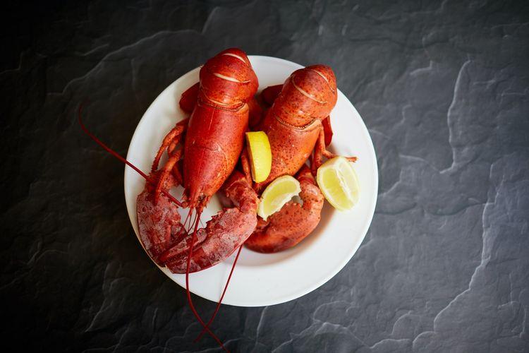 Ilustrasi 2 lobster di atas piring.