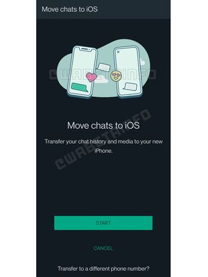 WhatsApp tengah mempersiapkan fitur transfer chat WhatsApp dari Android ke iPhone.