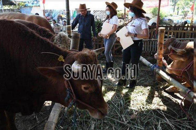 Sales promotion girl (SPG) mengenakan kostum ala koboi sembari menawarkan sapi dan kambing di lapak Setiawan di Jalan Kedung Baru, Surabaya.