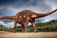 Dinosaurus Juga Alami Infeksi Tulang Akut, Peneliti Temukan Buktinya