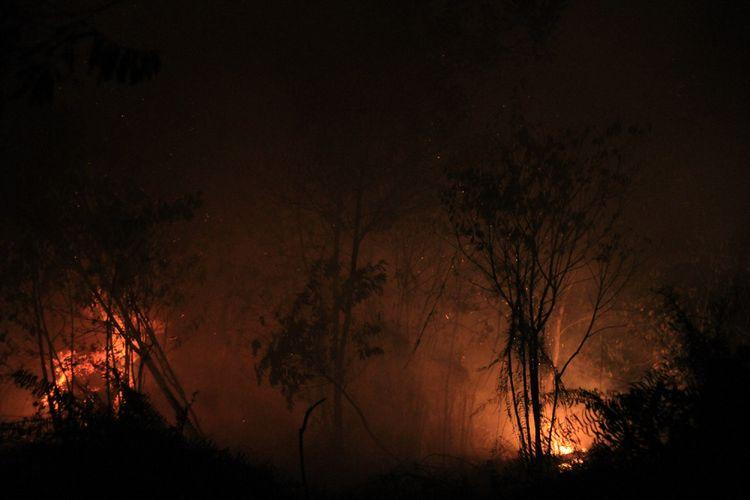 Kobaran api yang membakar lahan gambut yang berdekatan dengan pemukiman penduduk di Jalan Purnama II, Pontianak, Kalimantan Barat, Senin (20/8/2018) malam.