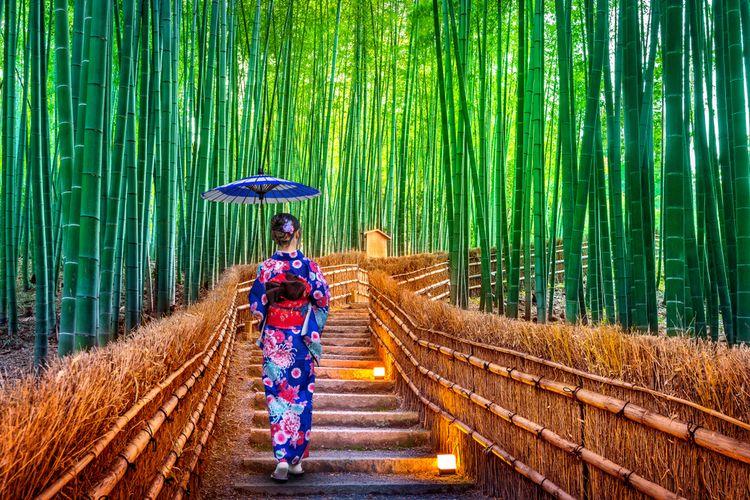 Arashiyama Bamboo Forest, wisata populer di Kyoto, Jepang.