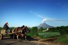 Gunung Sinabung Meletus, Warga 5 Desa Mengungsi