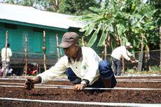 Wujudkan Pertanian Alami, Badan Restorasi Gambut Dukung SLPG