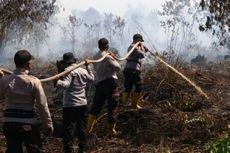 Setelah Petugas Kewalahan, Karhutla di Riau Akhirnya Padam Diguyur Hujan