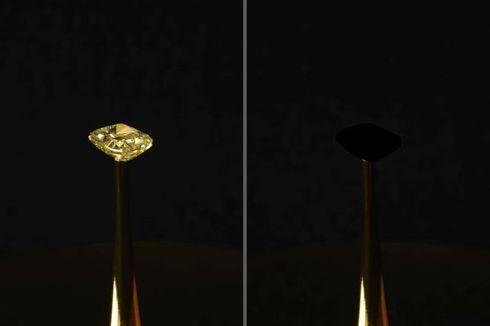 Ilmuwan Ciptakan Material Paling Hitam di Bumi, Bisa Hilangkan Berlian