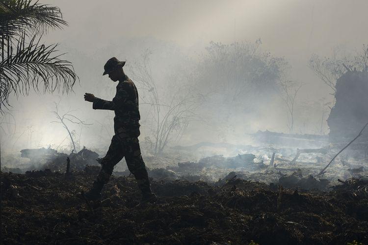 Seorang penjaga hutan memeriksa kebakaran hutan gambut di Meulaboh, Aceh, Rabu (26/7/2017). Badan Meteorologi, Klimatologi, dan Geofisika (BMKG) Aceh menyebutkan 49 titik panas terpantau oleh satelit berada di delapan wilayah di Aceh sehingga menyebabkan bencana kabut asap hampir merambah 23 kabupaten/kota di Aceh.