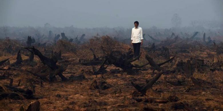 Presiden Joko Widodo berada di tengah area hutan gambut yang rusak dan hangus saat melakukan inspeksi kebakaran hutan di Banjarbaru, Kalimantan Selatan, 23 September 2015.
