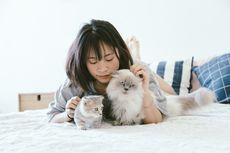 Jangan Pelihara Hewan jika Tak Bisa Penuhi 5 Hal Berikut