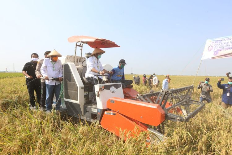 Menteri Pertanian Syahrul Yasin Limpo melakukan kunjungan kerja ke Kabupaten Indramayu, Minggu (6/9/2020).