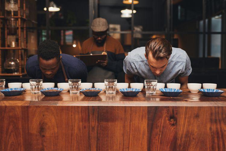 Ilustrasi barista sedang coffee cupping. Mereka mencium aroma kopi setelah diseduh.