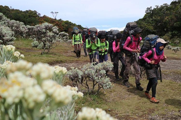 Calon anggota Mapala UI berlatih ilmu mendaki gunung di Lembah Mandalawangi Gunung Pangrango, Jawa Barat.
