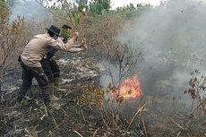 Kisah Puluhan Polisi Riau, 3 Hari Tidur di Hutan Gambut demi Padamkan Karhutla yang Membandel