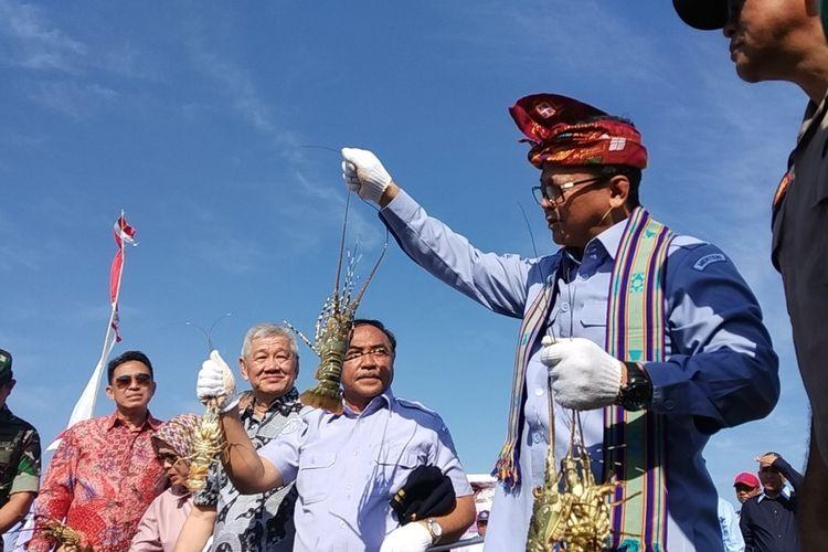 Menteri Kelautan dan Perikanan Edhy Prabowo saat mengunjungi lokasi budidaya Lobster di Lombok