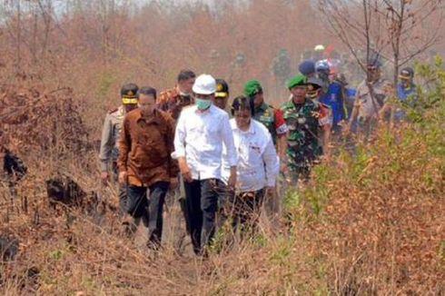 Jokowi Minta Daerah Buat Anggaran Khusus Pencegahan dan Penanganan Kebakaran Hutan