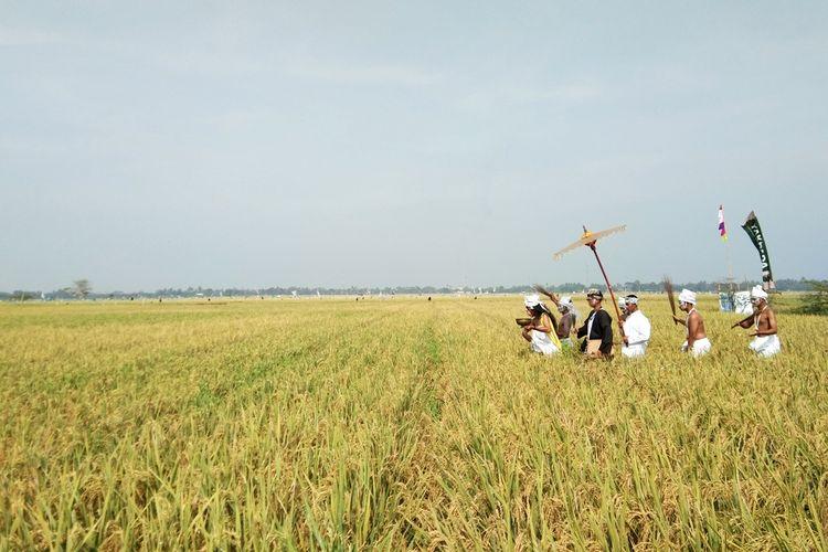 Indonesia Sebagai Negara Agraris Apa Artinya Halaman All Kompas Com