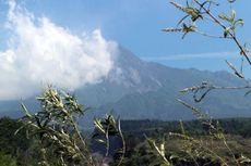 Tahun Baru di Gunung Merapi, Pendaki Diimbau Tidak Pergi ke Puncak