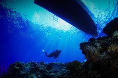 3 Spot Diving di Laut Merah, Menyelam di Antara Bangkai Kapal Kuno