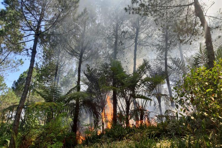 Kebakaran hutan di kawasab Gunung Slamet, Jawa Tengah semakin meluas, Kamis (12/9/2019).
