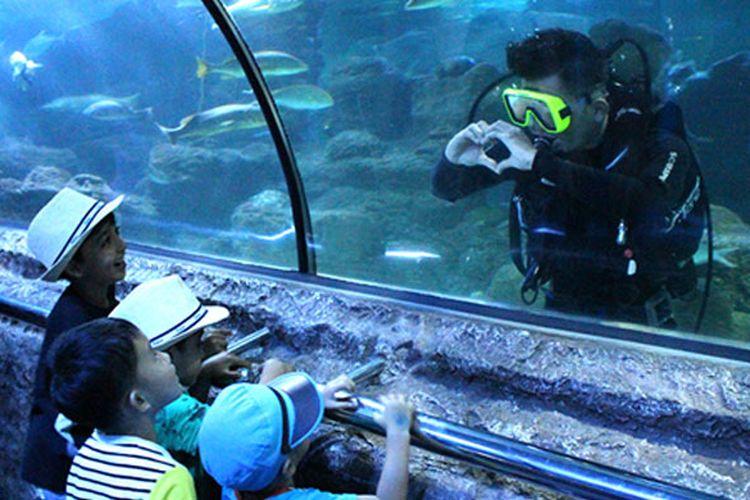Wahana Under Water Tunnel di Seaworld Ancol.