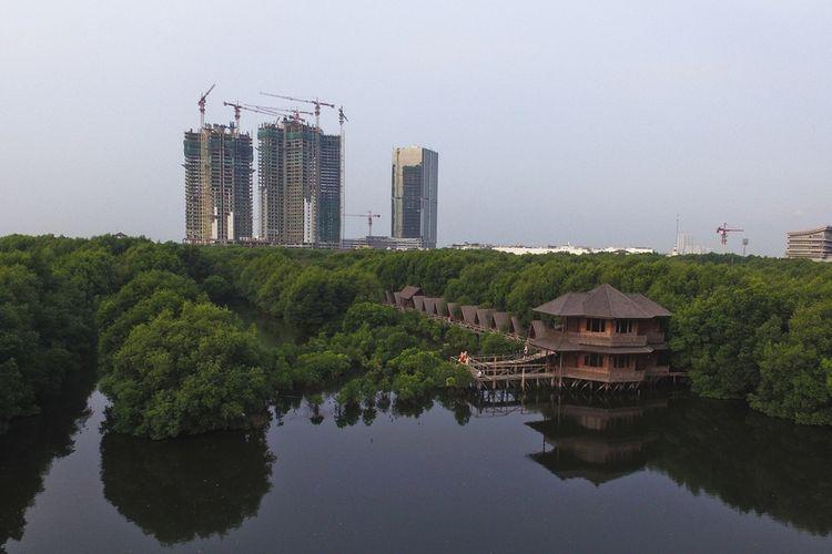 Hutan Mangrove Jakarta Pantai Indah Kapuk.