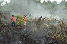 Karhutla Juga Melanda Dumai, Puluhan Petugas Diterjunkan ke Lokasi untuk Pemadaman Api
