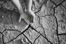 Kelangkaan Sumber Daya dan Cara Mengatasinya