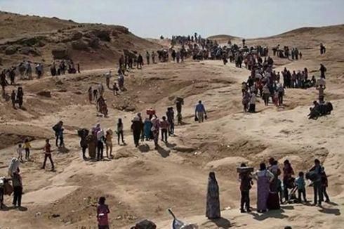 Kuasai Kota Sinjar, ISIS Buru Etnis Minoritas Yazidi