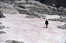 Es Berwarna Pink Muncul di Pegunungan Alpen, Fenomena Apa Itu?