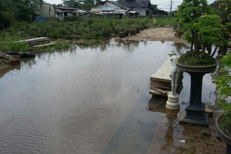 Kebun Bonsai di Jalan Pertamina, Depok, Senin (11/3/2019).